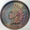 1888 Indian Head Cent Proof Brown