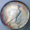 1923 Peace Dollar Toned