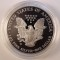 2004 W American Silver Eagle Proof