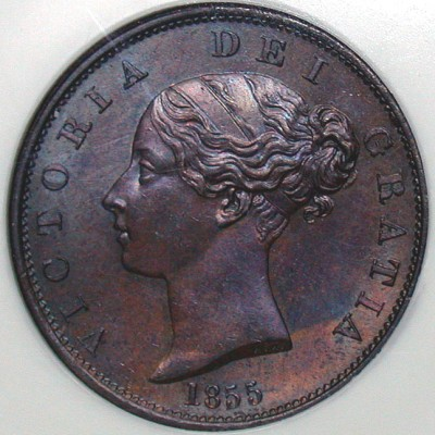 click for larger picture of 1855 Great Britain Half Penny Victoria