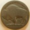 Dateless Buffalo Nickel