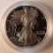 1999 P American Silver Eagle Proof
