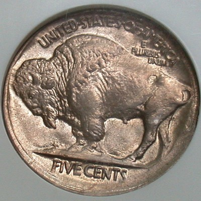 click for larger picture of 1919 Buffalo Nickel broad struck error
