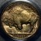 1936 D Buffalo Nickel