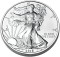 2010 American Silver Eagle Uncirculated 1oz
