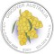 2007 Australian Golden Wattle 1/2 ounce Platinum 50 Dollars Proof