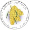2007 Australian Golden Wattle Platinum Proof 1/10 ounce 15 Dollars