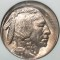 1919 Buffalo Nickel broad struck error