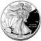 2009 W American Silver Eagle Proof (not issued)